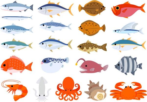 お魚のイラスト画像
