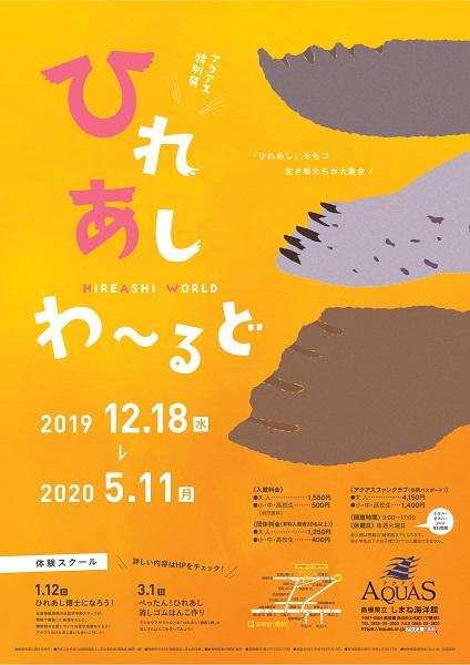 12/18(水)~5/11(月) アクアス特別展『ひれあしワールド』
