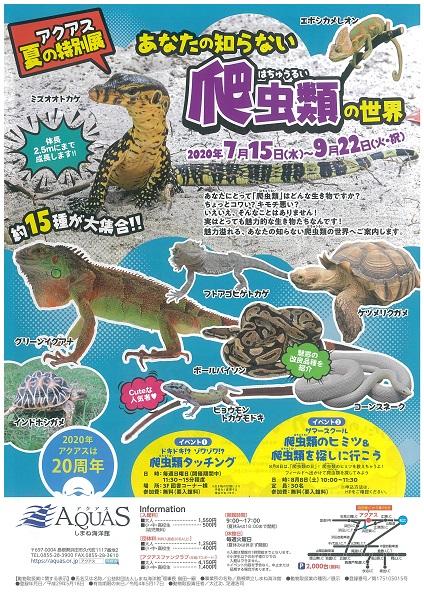 しまね海洋館アクアスあなたの知らない爬虫類の世界のチラシ