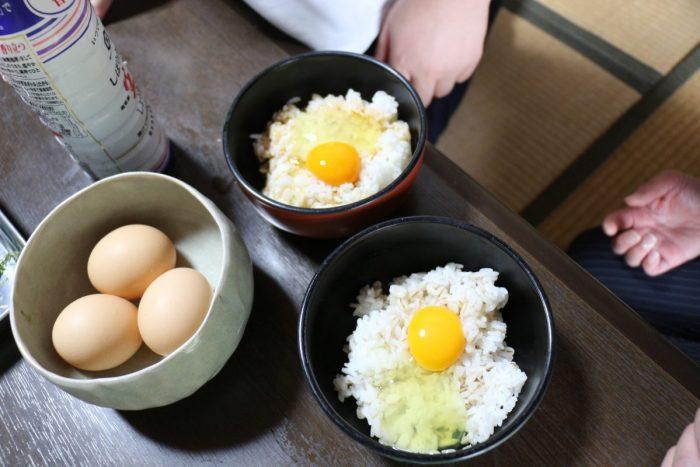 ワンにゃんべぇハウス大江屋の卵かけご飯