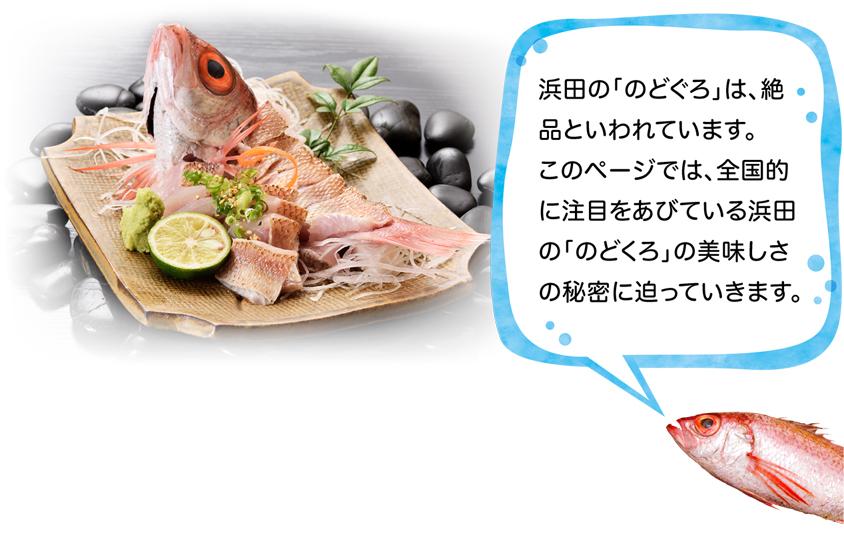 """이 페이지에서는, 전국적으로 주목을 뒤집어 쓰고 있는 하마다의 """"해골""""의 맛있음의 비밀에 강요해 갑니다."""