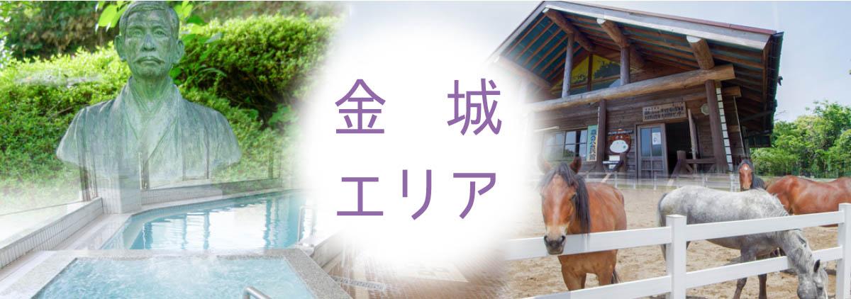 Kaneshiro area