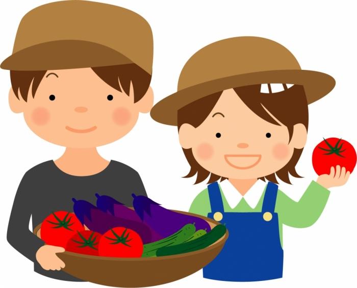 夏野菜を使って漬物づくりに挑戦