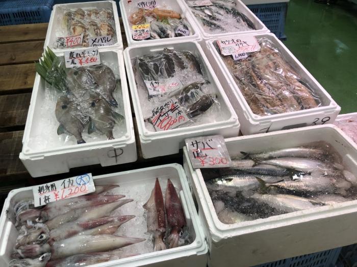 はまだお魚市場 仲買棟